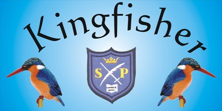 kingfusher-banner